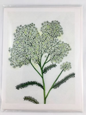 Yarrow Card Front Sleeve